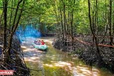 越南最南端--金瓯省注重实现旅游业可持续发展 在越南旅游地图上打下烙印