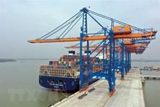 捷克与东盟实现海关手续办理流程规范化 推动贸易关系向前发展