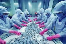 着力纾解困难 力争实现全年虾类产品出口额达逾40亿美元
