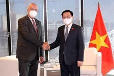 越南国会主席王廷惠会见奥地利部分企业代表