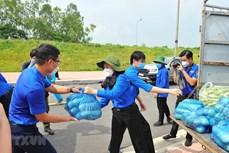 响应越共中央总书记的号召首都河内近5000名青年志愿者奔赴各地参与防疫工作