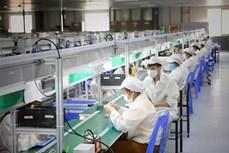 越南企业对招聘需求增长前景保持乐观态度
