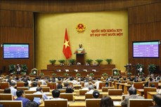 越南第十四届国会第十一次会议:继续健全国会、政府领导班子