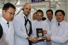 Hiệp định EVFTA: Gia Lai xuất khẩu lô cà phê đầu tiên sang châu Âu