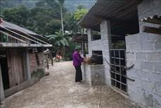 Cao Bằng tăng sức đề kháng cho đàn gia súc
