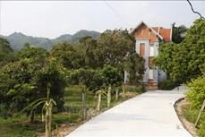 Nhãn Bình Ca giúp xã Thái Bình đi đầu trong xây dựng nông thôn mới