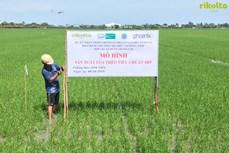 Hợp tác Việt-Bỉ trong lĩnh vực xã hội học nông thôn đạt nhiều kết quả khả quan