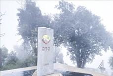 Điện Biên: Băng tuyết xuất hiện, phủ kín đỉnh Khoan La San - A Pa Chải