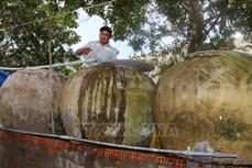 Người dân huyện ven biển An Biên (Kiên Giang) thiếu nguồn nước sạch