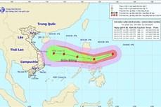 Hỗ trợ lương thực cho các hộ dân bị thiệt hại do bão lũ, kiên quyết không để người dân bị đói, rét