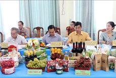 Ninh Thuận có 61/69 sản phẩm OCOP đạt tiêu chuẩn từ 3 đến 4 sao