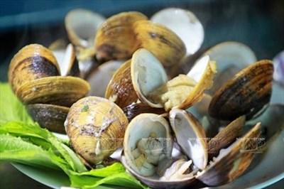 Khai thác giá trị văn hóa ẩm thực gắn với phát triển du lịch - nhìn từ Nam Bộ - Bài cuối