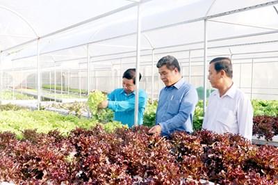 Phú Quốc phát triển nông nghiệp sinh thái gắn với du lịch