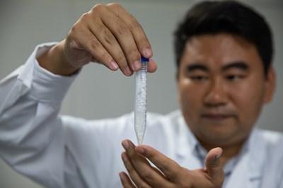 Trung Quốc phát triển thành công phương pháp tổng hợp tinh bột nhân tạo