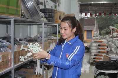 Chị Lê Thị Vân làm giàu nhờ chuyển giao kỹ thuật, thiết bị nông nghiệp công nghệ cao