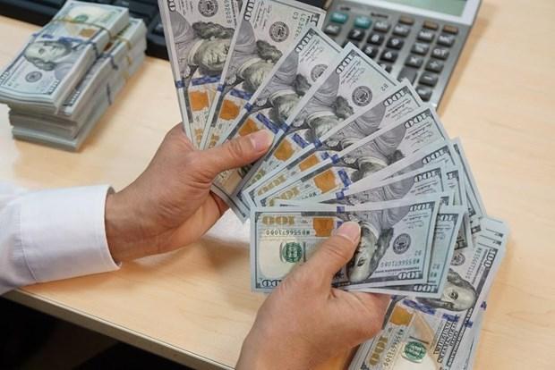 15日上午越盾对美元汇率中间价下调4越盾 hinh anh 1