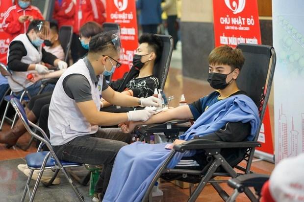 第十三届红色星期日设立80个献血点 预计累计献血量逾5万单位 hinh anh 3