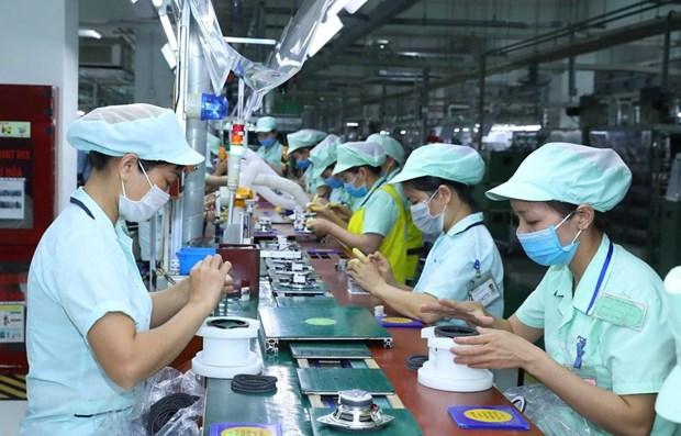 逾50%的在越南和印度的日本企业计划扩大经营活动规模 hinh anh 1