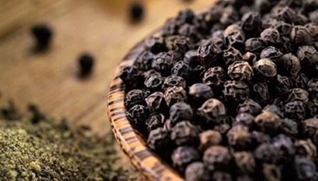 马来西亚扩大胡椒种植面积 hinh anh 1