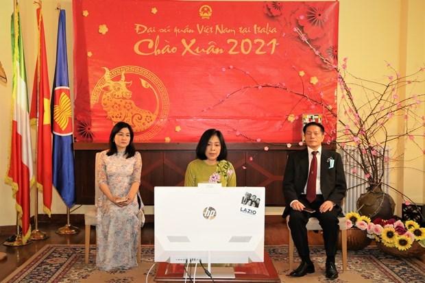 海外越南人纷纷举办各种庆祝活动 欢庆传统新春佳节 hinh anh 1