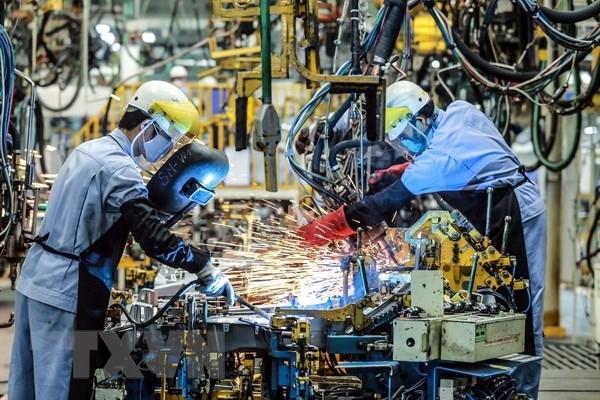 世行:2021年越南经济增速达6% hinh anh 1