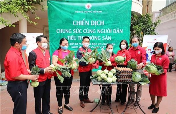 越南红十字协会启动疫区农产品爱心购活动 hinh anh 1