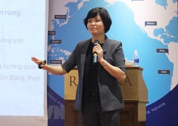 RCEP:越南企业的机遇与挑战 hinh anh 2