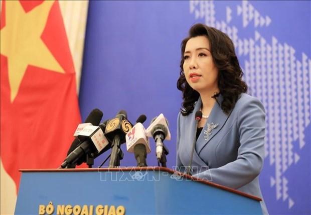 外交部发言人黎氏秋姮针对一些国际问题提出观点 hinh anh 1