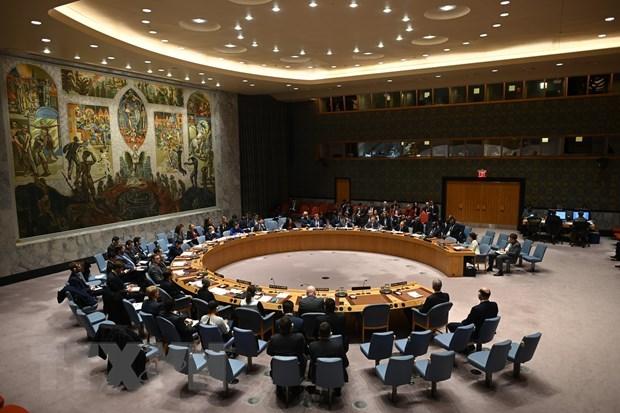 印度与越南就联合国安理会问题进行磋商 hinh anh 1