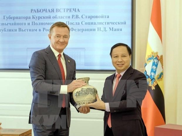 加强越南与俄罗斯各地方的合作 hinh anh 2