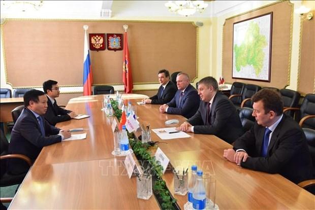 加强越南与俄罗斯各地方的合作 hinh anh 1