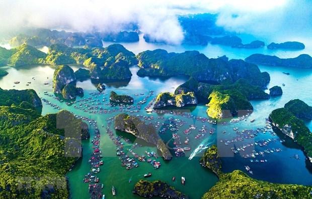 越南希望成为率先减少海洋污染的国家 hinh anh 1
