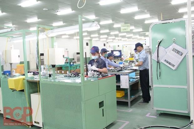 北江省应用生物技术和新材料技术来促进经济社会发展 hinh anh 1