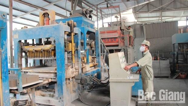 北江省应用生物技术和新材料技术来促进经济社会发展 hinh anh 2