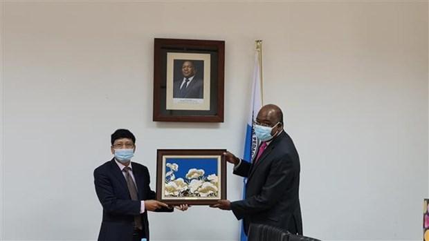 越南与莫桑比克进一步加强教育合作关系 hinh anh 1