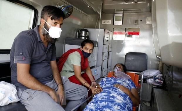 越南领导人就印度新冠肺炎疫情向印度领导人表示诚挚慰问 hinh anh 1