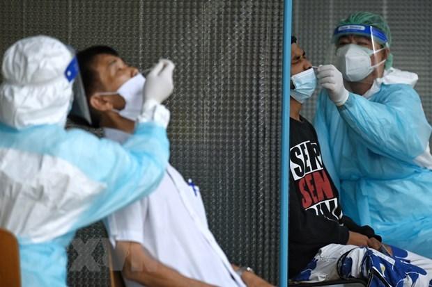 东南亚地区新型冠状病毒肺炎疫情最新情况 hinh anh 2