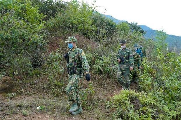 越南边防部队严厉打击非法入境 严防境外疫情输入 hinh anh 2