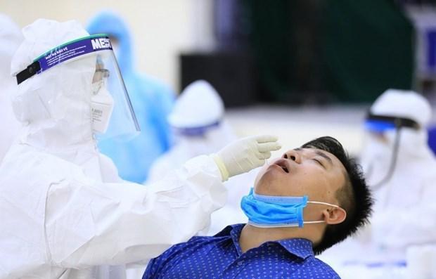 截至10日12时越南新增31例本土确诊病例 hinh anh 1