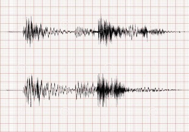 昆嵩省公伯陇县发生3.9级地震 hinh anh 1