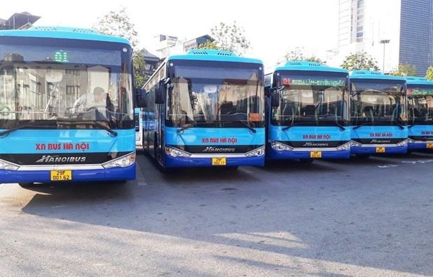 河内市拟开设90至100条新公交车线路 hinh anh 1