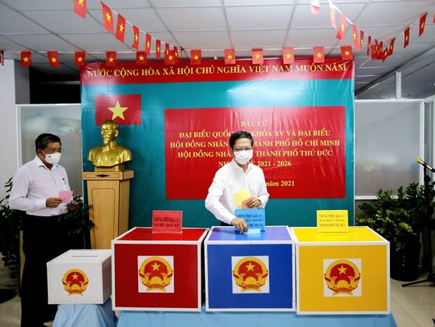 国会副主席阮克定:选举工作按计划进行 hinh anh 1