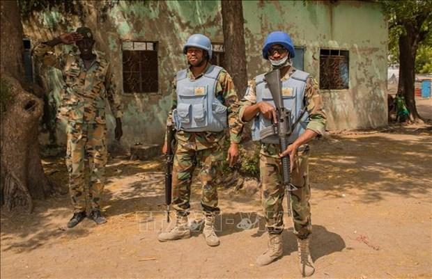 越南与联合国安理会:越南谴责针对维和人员的袭击 hinh anh 1