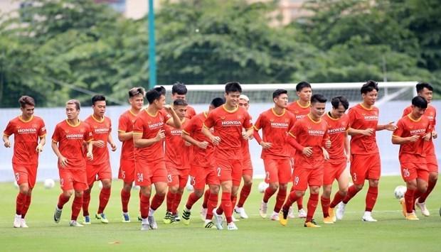 本田继续成为越南国家足球队的主要赞助商 hinh anh 1