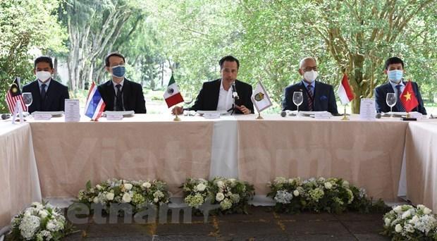 东盟与墨西哥韦拉克鲁斯州共促经贸投资合作大发展 hinh anh 1