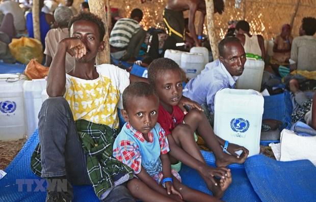 越南与联合国安理会:越南强烈谴责一切针对埃塞俄比亚平民的暴力行动 hinh anh 1