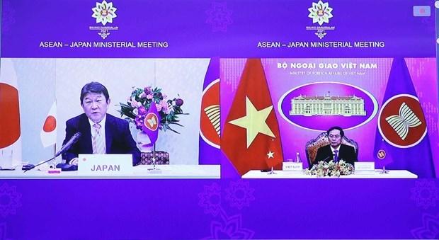 东盟-日本外长会议以线上形式举行 hinh anh 1