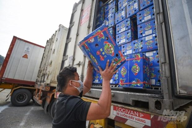 越南与中国签署农业和水果销售合作备忘录 hinh anh 1
