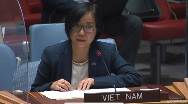 越南与联合国安理会:越南提议联合国和国际社会助力埃塞俄比亚战胜政治危机 hinh anh 1