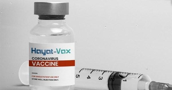 Hayat – Vax成为在越南获批的第七种新冠疫苗 hinh anh 1